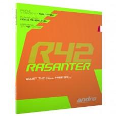 andro Rasanter R42
